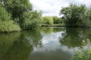 Millers Lake (1)